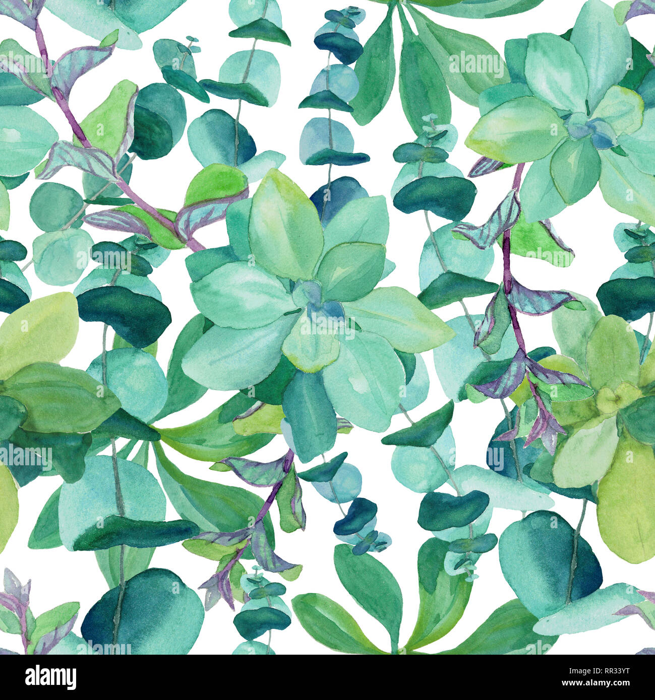 Seamless Watercolor Pattern Of Baby Blue Eucalyptus Decorative Nettle Mint Succulents Botanical Design For Textile Packaging Wrapping Paper Stock Photo Alamy