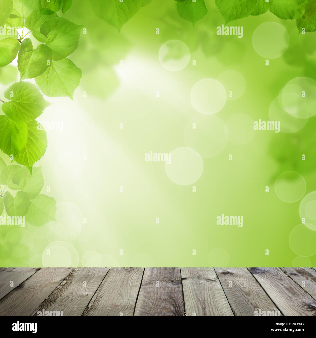 Spring Soft Focus Background With Abstract Green Leaves Sun