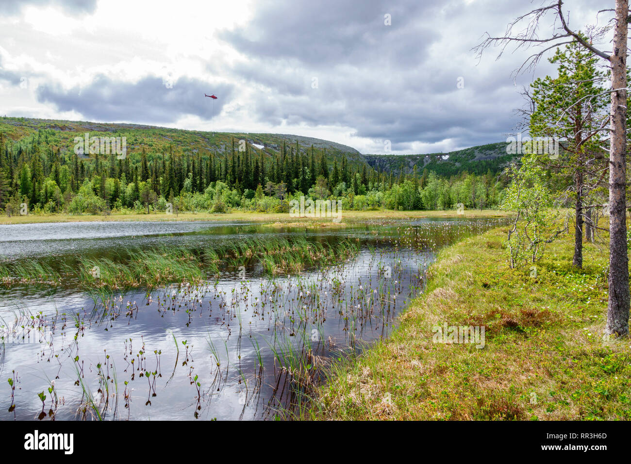 Forest lake in the woodland with a helicopter in the sky - Stock Image
