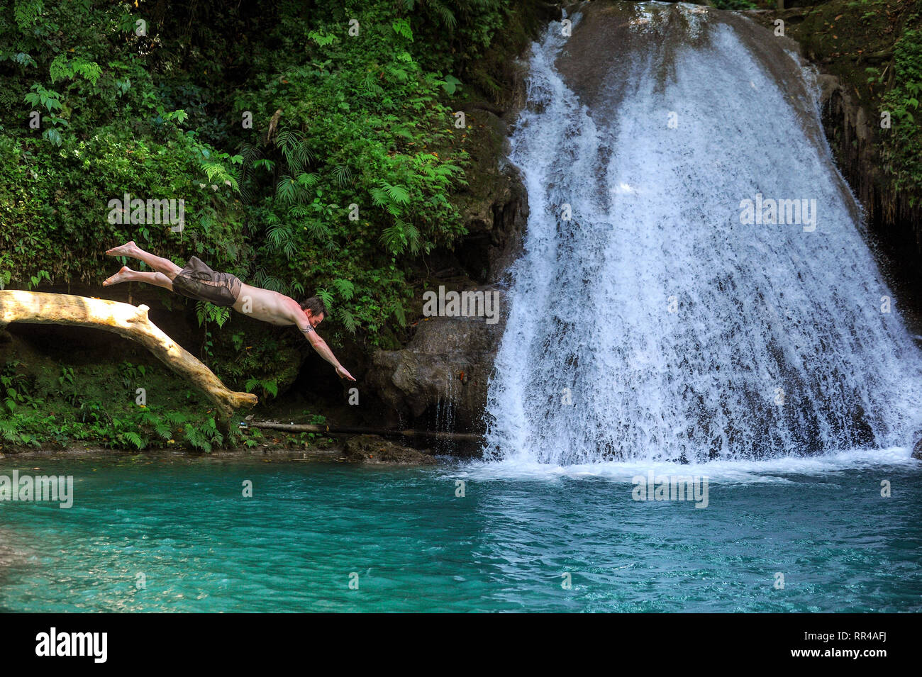 A man dives into the pool at  Blue hole waterfall at Island Gully Falls near Ocho Rios on the Caribbean island of Jamaica. - Stock Image