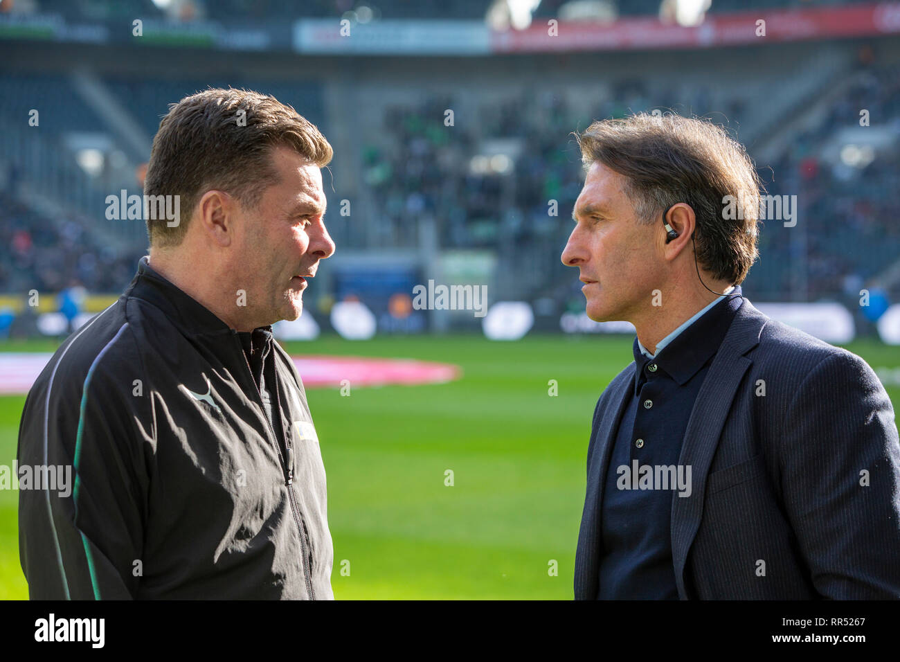 sports, football, Bundesliga, 2018/2019, Borussia Moenchengladbach vs VfL Wolfsburg 0-3, Stadium Borussia Park, head coaches Dieter Hecking (MG) left and Bruno Labbadia (Wolfsburg) talking, DFL REGULATIONS PROHIBIT ANY USE OF PHOTOGRAPHS AS IMAGE SEQUENCES AND/OR QUASI-VIDEO - Stock Image