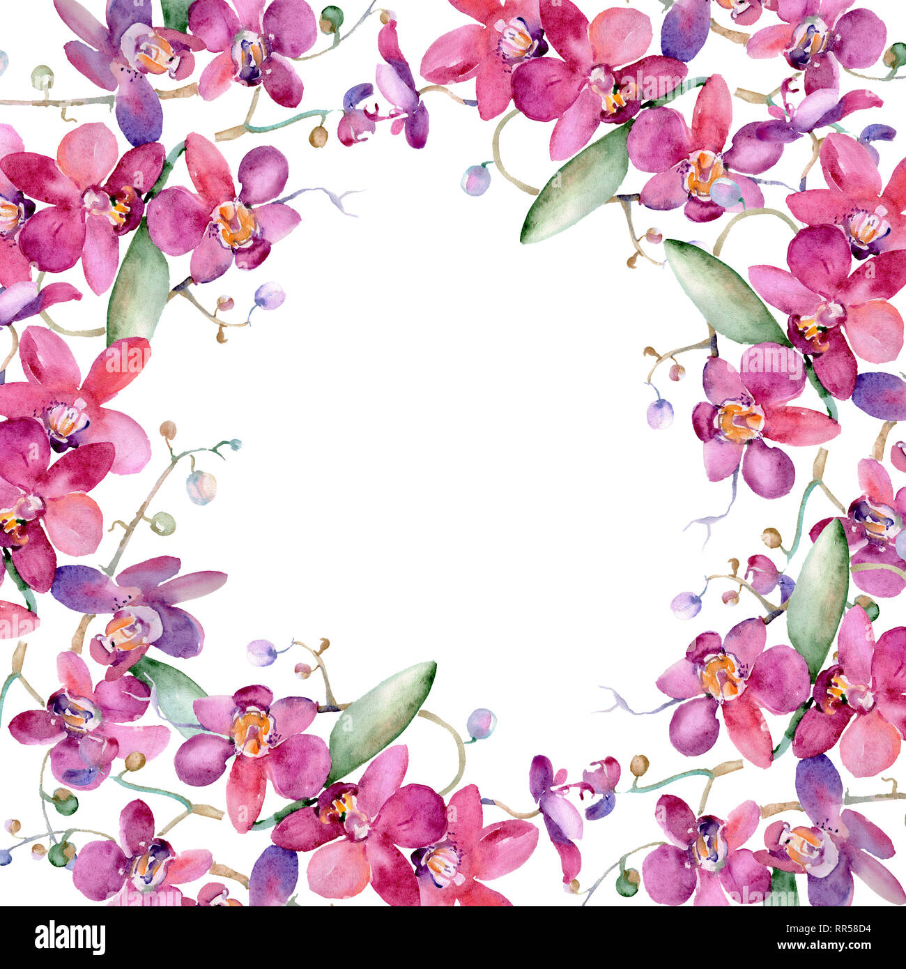 Pink Orchid Bouquet Floral Botanical Flower Watercolor Background