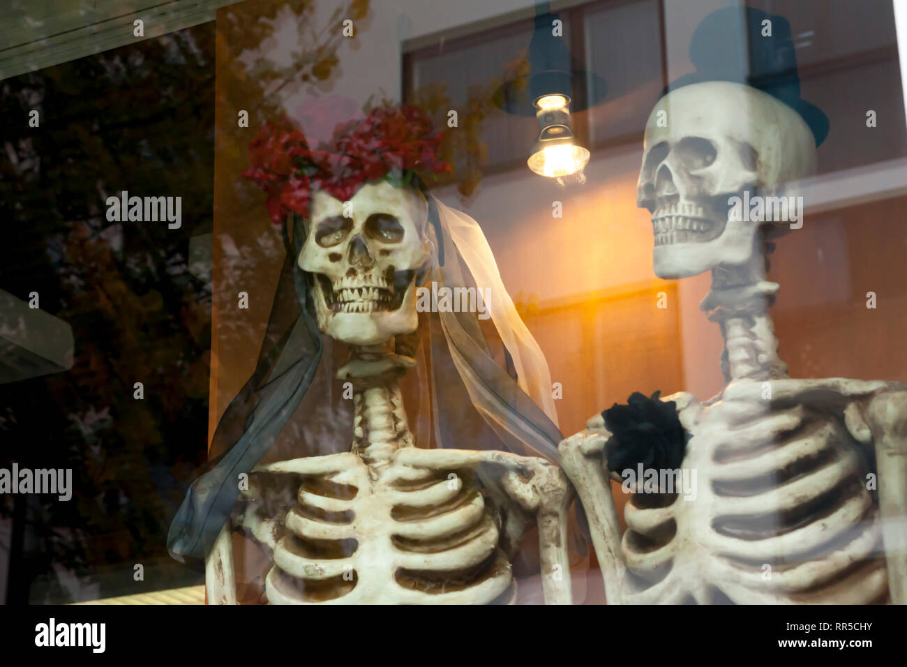 Two dressed up for honeymooners skeletons on the window. - Stock Image