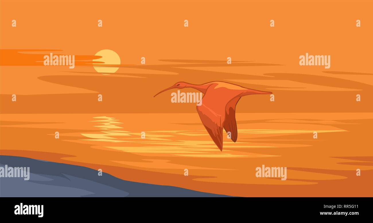Nile sunset. Landscape illustration of an ibis flying over a river in fading twilight. - Stock Vector