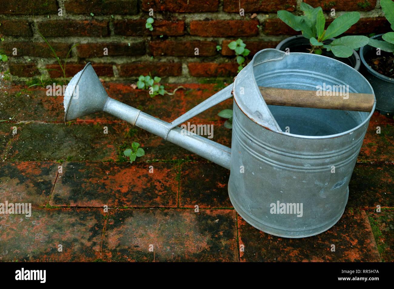 One galvanized watering can on the garden's brick floor - Stock Image