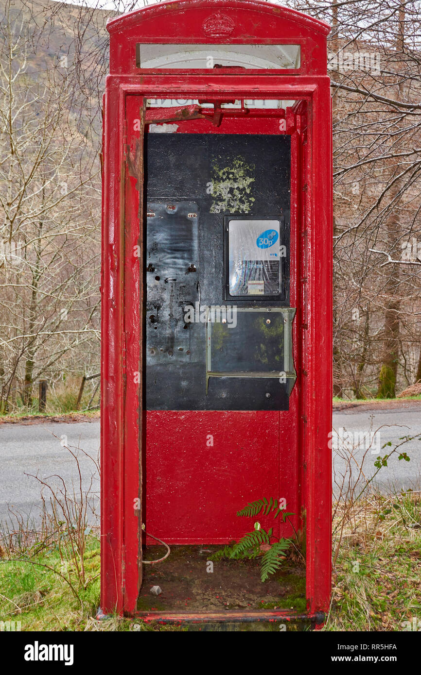 OLD RED DISUSED DERELICT TELEPHONE BOX WITH GREEN FERN GROWING INSIDE - Stock Image