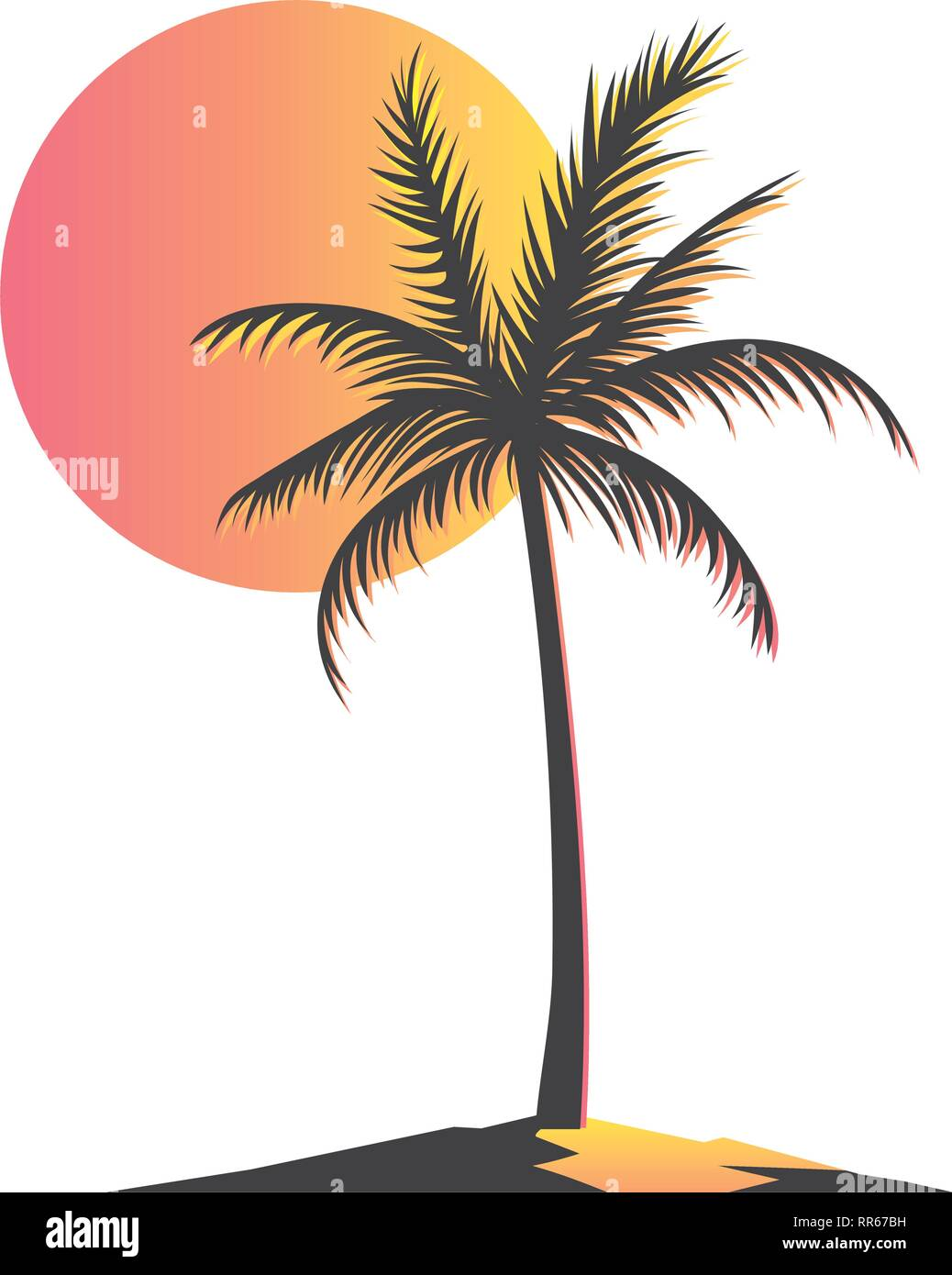 palm and sun - Stock Image