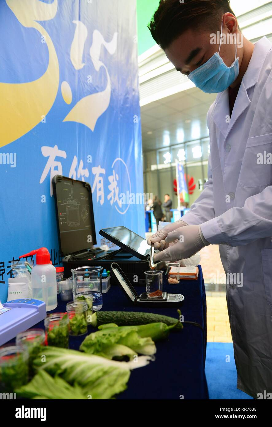 (190225) -- BEIJING, Feb. 25, 2019 (Xinhua) -- A technician checks the content of sulfur dioxide in food during an activity in Nanning, capital of south China's Guangxi Zhuang Autonomous Region, March 15, 2017, the International Consumer Rights Day. China has unveiled a guideline to enhance the accountability system of local governments to strengthen supervision over food safety. Food safety will be included in the performance assessment of the Party and government leading officials, according to the guideline released by the Central Committee of the Communist Party of China (CPC) and the S - Stock Image