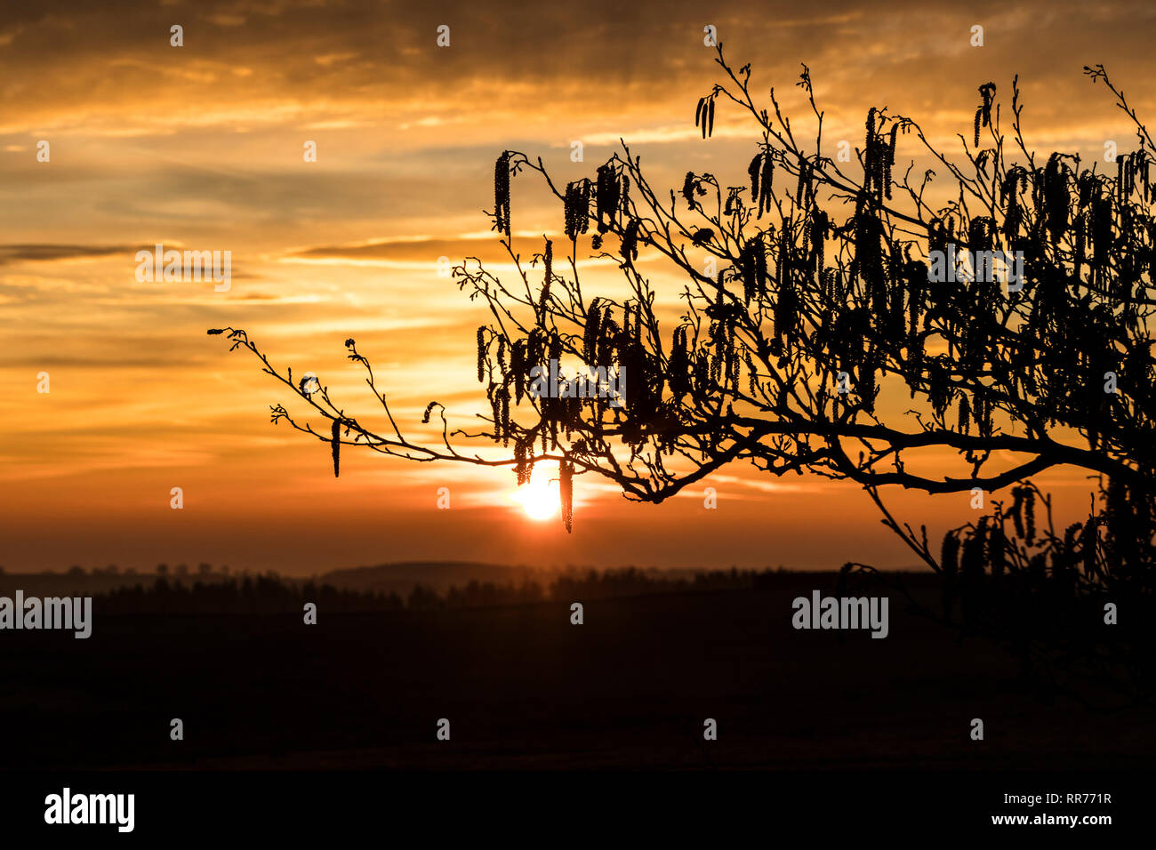 Teesdale, County Durham, UK. Monday 25th February 2019. UK Weather. A spectacular sunrise heralds another day of unseasonably warm weather in Northern England. Credit: David Forster/Alamy Live News - Stock Image
