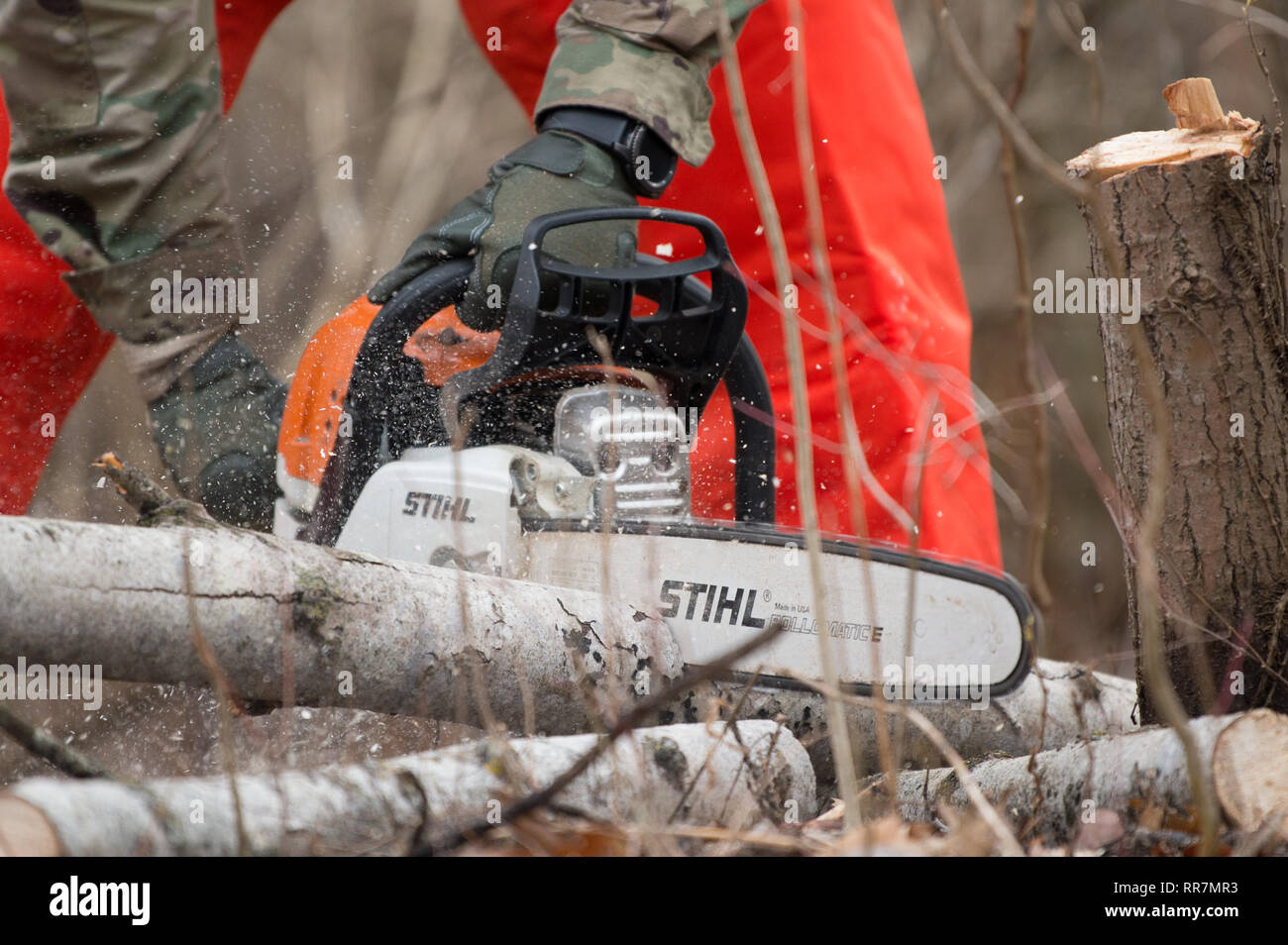 A Soldier cuts into a log with a chainsaw during training at Youngstown Local Training Area, Feb. 24, 2019. The training team was composed of New York Army National Guard and New York Guard Soldiers. They trained on how to use the equipment properly and safely. These Soldiers are just a few of more than 250 Soldiers and Airmen that are deployed to Western New York for debris clearing missions in support of Operation February Winter Storm. (U.S. Air National Guard photo by Master Sgt. Brandy Fowler) - Stock Image