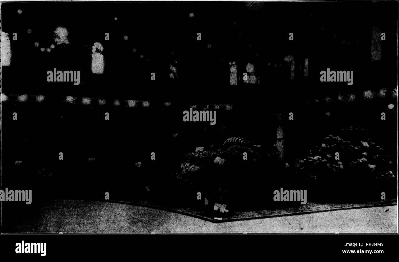 Bush 41 Black and White Stock Photos & Images - Alamy