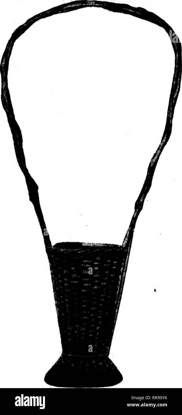 . Florists' review [microform]. Floriculture. JONB 15, 1922 The Florists' Review 43 A WONDERFUL GLADIOLUS BASKET No. 112-SPECIAL IHIIMINIIUUillUIIIMUUUIIUIlUlUlliUMillUUIIUIIIUIIUIIIIIIIHUIIIUmilllMUIIIIIIIIIIIIIIIIIIIIi This basket is finished in two-tone colorings, ' metal liners. Just the basket for funeral work. D Price, each. $1J5 luuiuiuiuJuiiuiniuuimiuiiuiiuiuiiiiiiiiiiiiiiimiiiiuiuiiiiHiuiiiiiiiiiiiiiiiiiiiiiiiiuiiiiiii'. iiiiiiiiiiiiHUiuiuiniiiHiiiiiiiuiiuuiiiiiiiiiiHiiiiiiiHiiiiiiiiiiiiiiiiiiiiiiinimiiiiiniiiiiiiiiiiiiiiin Height 40 ins. Width 8 ins. Depth 17 ins. Opening 6% ins. D I - Stock Image