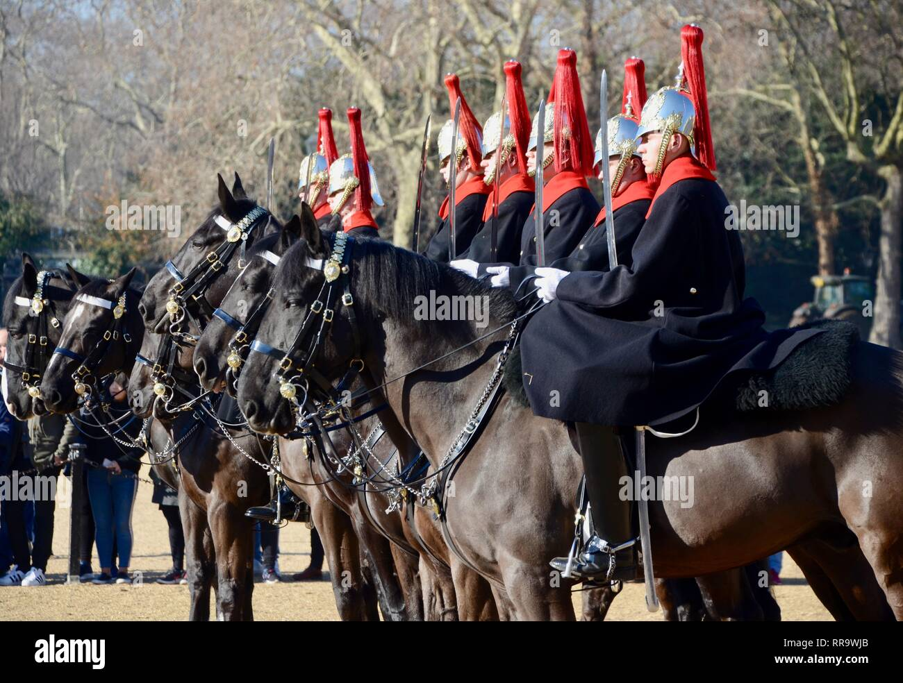 a line of soldiers on horseback at londons changing of the guard ceremony UK - Stock Image