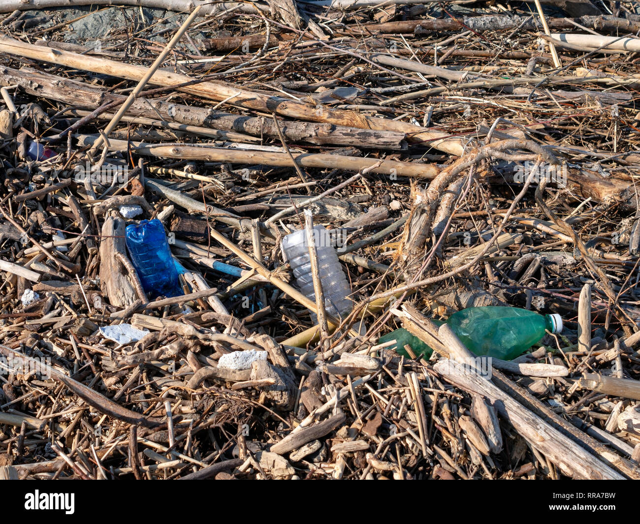 Beach debris washed up after winter storm. Wood branches drfitwood and plastic bottles. Storm aftermath. - Stock Image