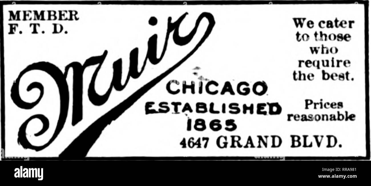 """. Florists' review [microform]. Floriculture. Orders Carefully Elxecuted AND ALL SUBURBS CHICAGO """"'^/d?/"""""""" CD ^i- OR I ST : ;57 N. HAMILTON AVE. Open evenings and Sundays. Member F. T. P. GEORGE FISHER & BRO. 183 N. WABASH AVE. CHICAGO ; Flowers for all Occasions Tel. Lake View 1121 3912 North Clark St.. CHICAGO CHICAGO OBDEBSTO cJeiiseA .OR 1ST FboiM Gneelaiid isn 8S35 UDeotai Ai and then .a trip will be taken to Dnluth and the Iron range. F. n. Gibbs, of Gibbs & Nelson, was busy last month in his Justice court with moonshine cases. The latest haul netted ten stills, su - Stock Image"""