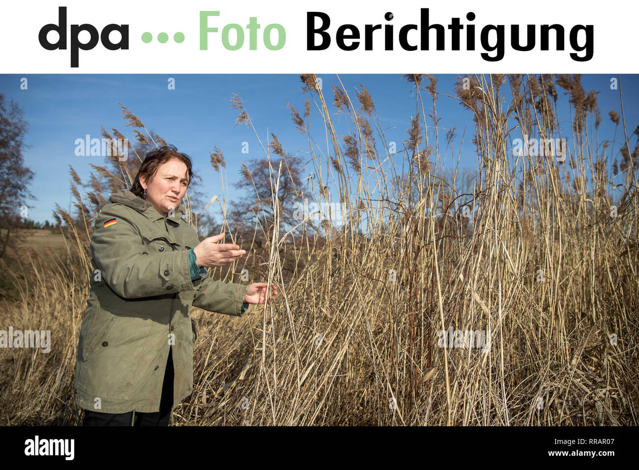 23 February 2019, Bavaria, Heilbronn: Dear customers, the first name of the protagonist Isabella Hirsch was misspelled in the five photos sent to the correspondent report 'Bio oder konventionell - Was hilft dem Artenschutz mehr' (Organic or conventional - what helps species protection more) of 24.02.2019. The photo will be sent to you again with the corrected text. We apologize for the mistake. Yours sincerely, Your dpa photo editor - Tel. 030 2852 31515 Photo: Daniel Karmann/dpa - Stock Image