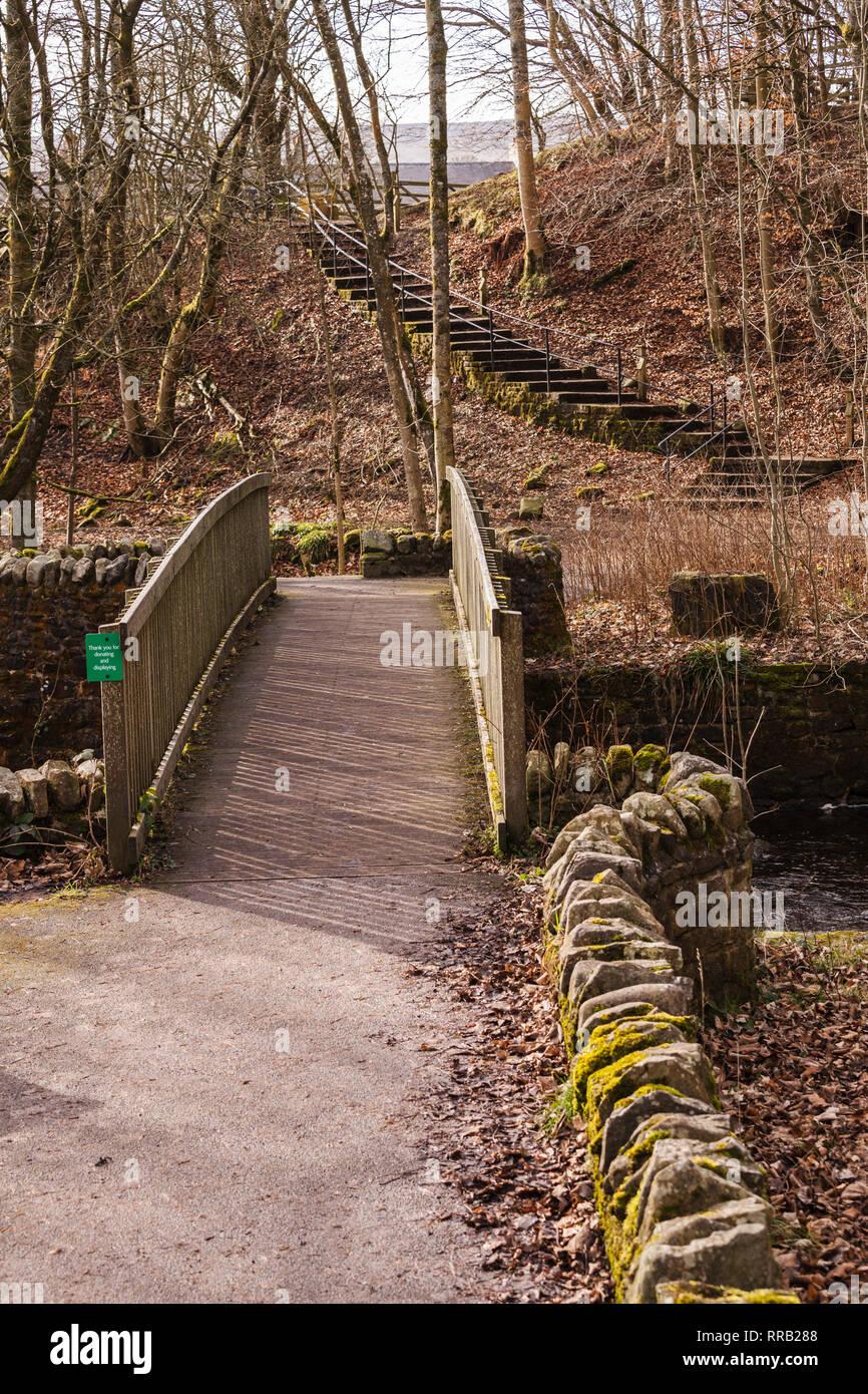 Bowlees,Teesdale,England,UK - Stock Image
