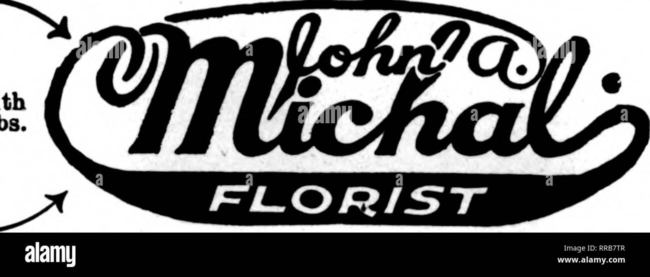 . Florists' review [microform]. Floriculture. (fSLAdamsSr. CUI I /^ A /^ /^ SEND YOUR n 1 ^ /A j J ORLEBS TO LOR J ST Phone Graceland 1S21 333S Lincoln Avenae CHICAGO BOH FLOR^ ANNO N FLORAL COMPANY Member F. T. D. 75 L Monroe St. Flowers for all Occasions Tel. Lake View 1121 3912 North Qark St. CHICAGO OTTAWA, ILL. LOHR-S GREENHOUSES Fancy Cut Flowers and Blooming PlanU. Gtood R. R. Service. Orders filled promptly. KANKAKEE, ILL. Schafer Floral Company KANKAKEE, ILL. GEORGE FABER, Leading ReUil Florist Member F. T. D. 162 S. Washington Ave. AURORA GREENHOUSE CO., AURORA, ILL. Our Service i - Stock Image