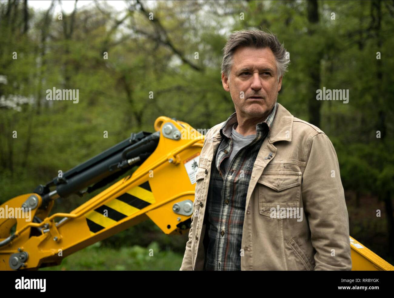 TROUBLE, BILL PULLMAN, 2017 - Stock Image