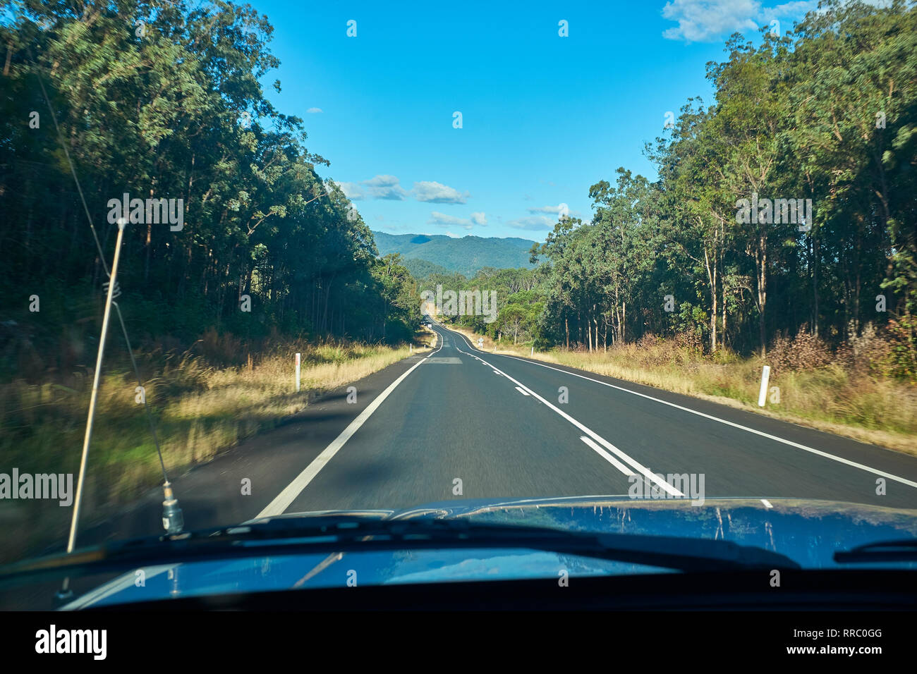 View from inside a car travelling along a road with gum trees both sides in the Australian outback on a bright day with no other traffic insight - Stock Image