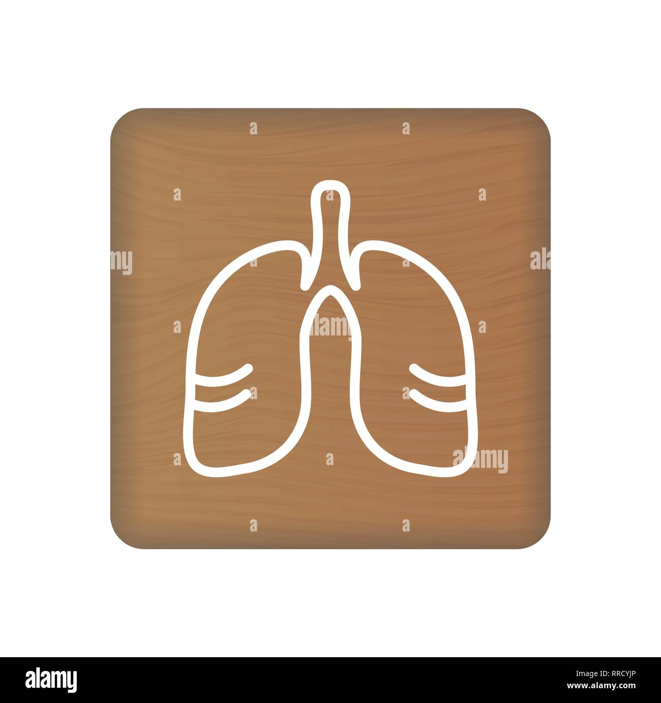 Human Lungs Icon An Internal Organ Vector Human Anatomy