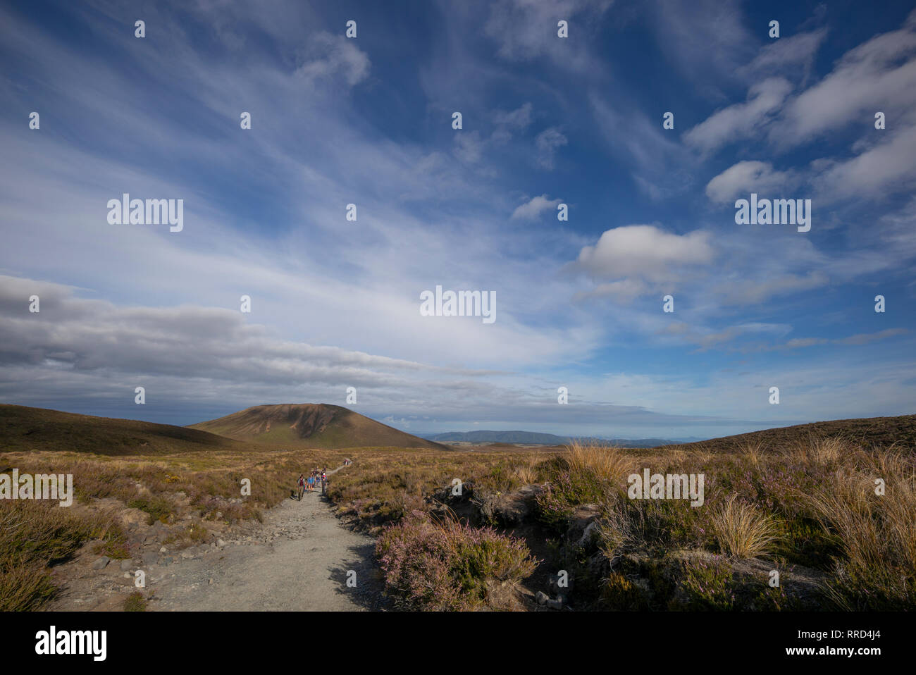 The landscape of the Tongariro walking route, New Zealand. Stock Photo