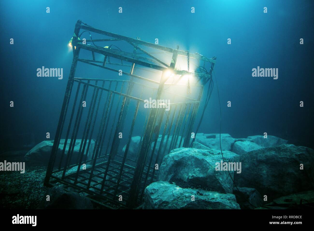 47 METERS DOWN, DIVING CAGE, 2017 - Stock Image
