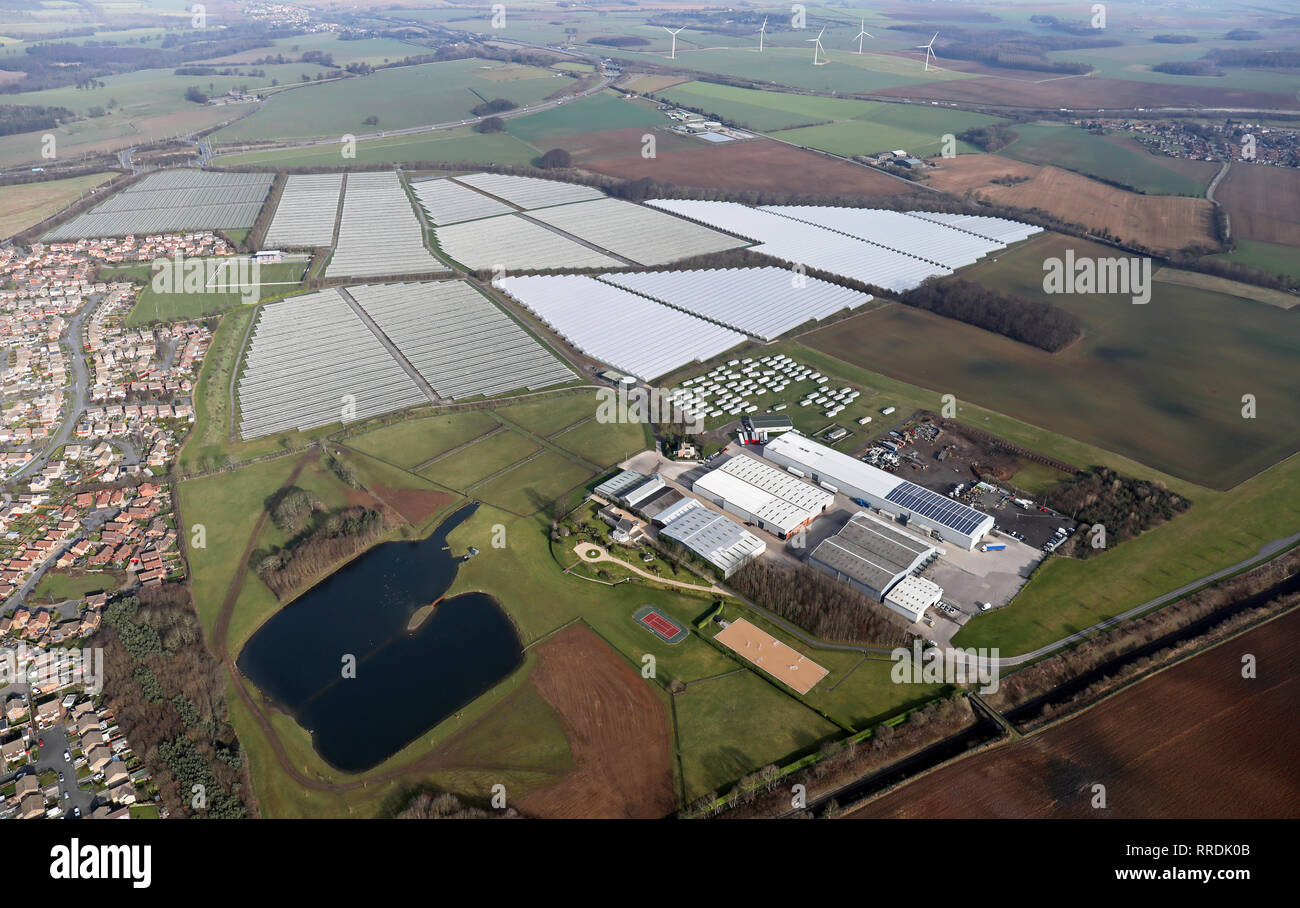 aerial view of the acres of polytunnels at Makins Soft Fruit Enterprise at Micklefield, Garforth, Leeds 25 Stock Photo