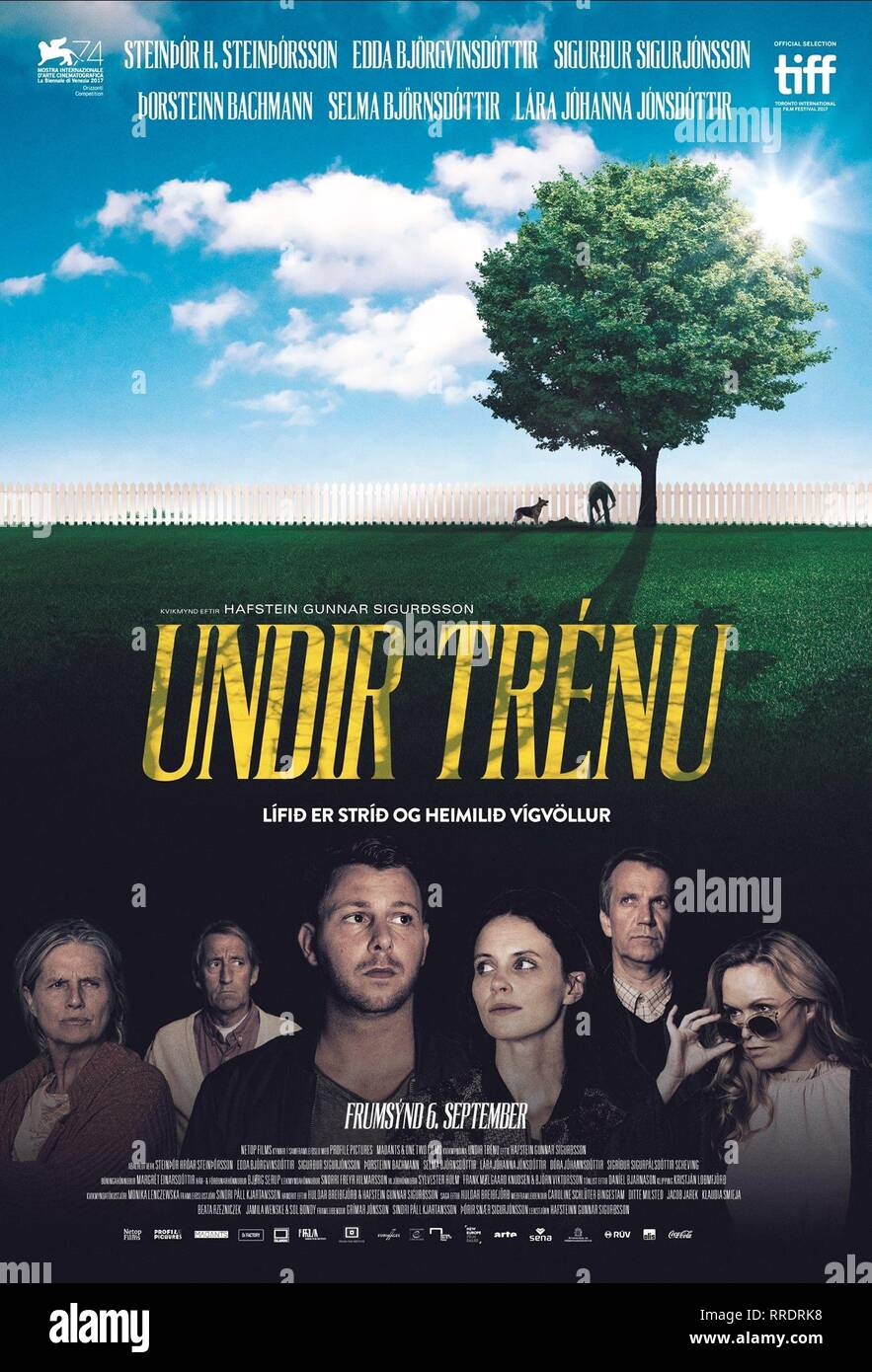 UNDER THE TREE, MOVIE POSTER, 2017 - Stock Image
