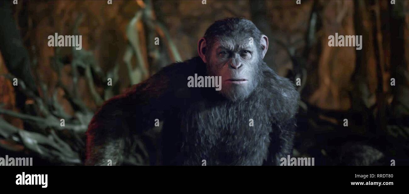 War For The Planet Of The Apes Caesar 2017 Stock Photo Alamy