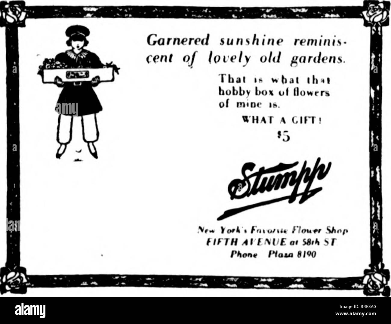 . Florists' review [microform]. Floriculture. Fbbbuaby 24, 1921 The Florists^ Review 7 RETAIL STORE MANAGEMENT WHAT THE LEADERS IN THE TRA.DE ARE DOING THEATER PROGRAM ADS. Stumpp's Specials. Theater program advertising has be- come a thing of as definite money value as newspaper advertising, and its use- fulness is recognized by a number of leading florists in various cities. The Fleischman Floral Co. has carried full- page advertisements in Chicago theater. programs. The Jones-Russell Co., in Cleveland, has found that orchestral concert programs are similiirly valuable. New and distinctive  - Stock Image