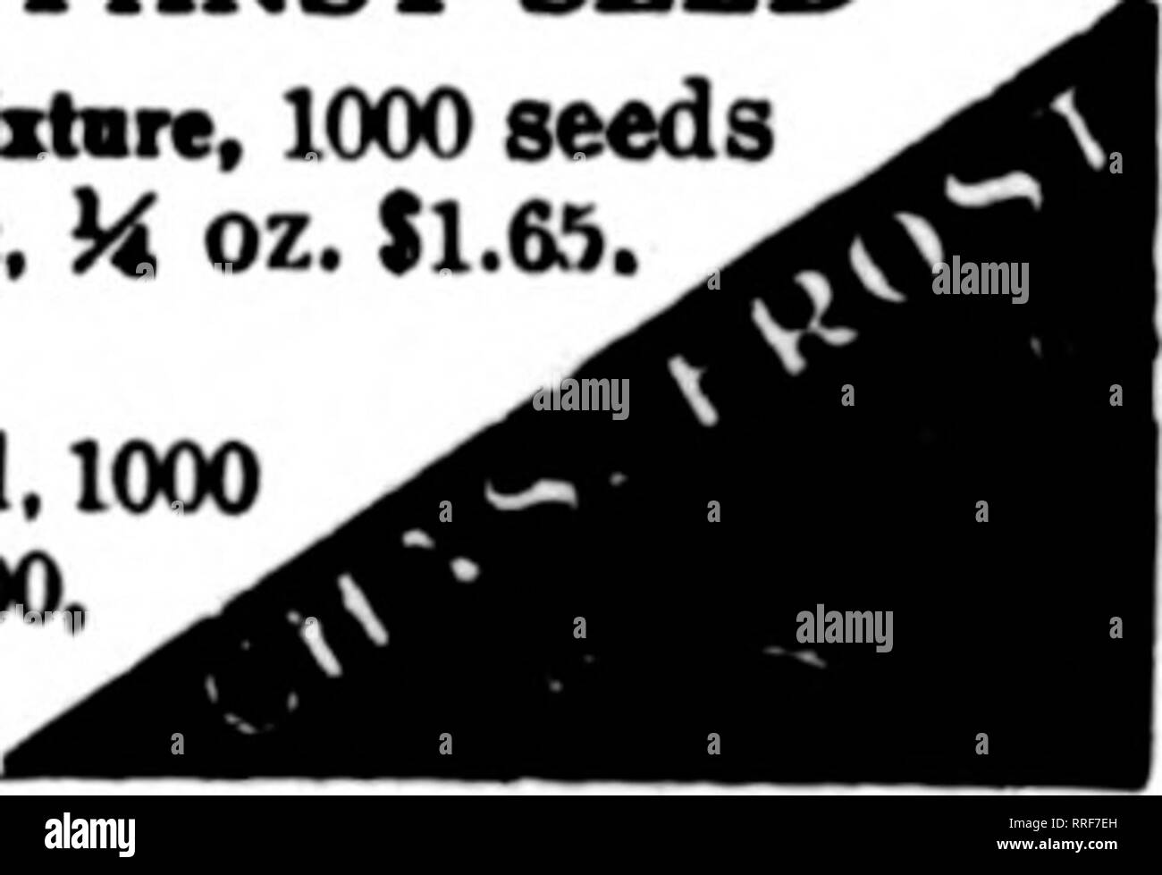 . Florists' review [microform]. Floriculture. Mention The Beylew when yog write. KENILWORTH GIANT PANSY SEED Kcaitwerih Miztsrc, 1000 seeds 85c, Is oz. 90c, H oz. $1.6S. 1 oz. $6.00. ADCeion, separate or mixed, 1000 seeds 30c, any 4 pkts $1.00, H oz. $1.30. 1 oz. $5.00. THE J. C. Robinson Seed Co. WATERLOO, NEB. ROCKY FORD, COLO. C!ontract growers of Cucumber, Cantaloupe. Watermelon,Sauash and Pumpkin Seed, Sugar, Flint and Field Seed Com. ICeatloa Tbe Berlew when yon write. THE KINBERLIN SEED CO. Seed c'r^era StkXl JOSC, C&l. GROWERS OP ONION, LETTUCE, RADISH, ETC. Corresonnrlpnce Solicit - Stock Image