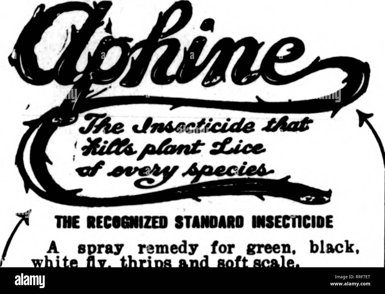 . Florists' review [microform]. Floriculture. April 7, 1921 The Florists^ Review 131 zenke'8 Liquid Fungicide 1 Gallon Makes 50 Gallons of SprlAying Solution A reliable j Leaf Spot, Scab, Black and Brown Rot,) $3.00 remedy for ) Leaf Rust, Mildew^, and most Fungoid Troubles j Per Gal. ! ORDER COUPON Use it and save $2.00 SPECIAL TRIAL OFFER Excel! Laboratories 4535 Ravenswood Ave. The Excei.l Laboratories, Chicagv, 111. Gentlemen:—Please send us five gallons of your Liquid Fungicide. This is the best we have yet found for Mildew. Meyer & Dramm Co., Rose Growers, Elmhurst, 111. We also manu - Stock Image