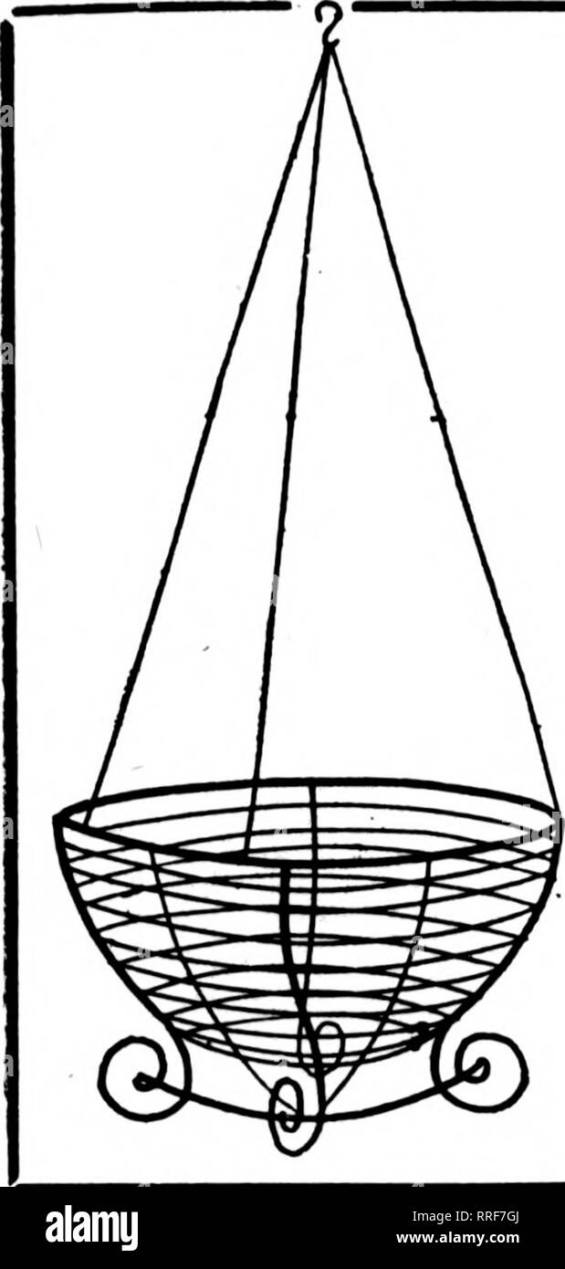 . Florists' review [microform]. Floriculture. March 24. 1921. The Florists^ Review 47 WIRE HANGING BASKETS NOT THE CHEAPEST BUT THE BEST The Well Made Kind Painted, Bound with Galvanized Wire 6 at dozen rate, SO at 100 rate Per doz. Per 100 8-inch $2.00 $16.00 10-inck 2.25 18.00 12-iiich 2.50 20.00 14-inch » 3.25 25.00 16-inch 4.25 32.50 18-inch 6.00 45.00 Prices on larger size Hanging Baskets quoted on application. Writ* for Price List of Wire Floral Designs. GREEN SHEET MOSS ?^^^-rVRSSk.SSTA^sKETs Per bag. $2.00; 10 bags, $17.50. Prices on larger quantities quoted on application. ^9 L« V^KI - Stock Image