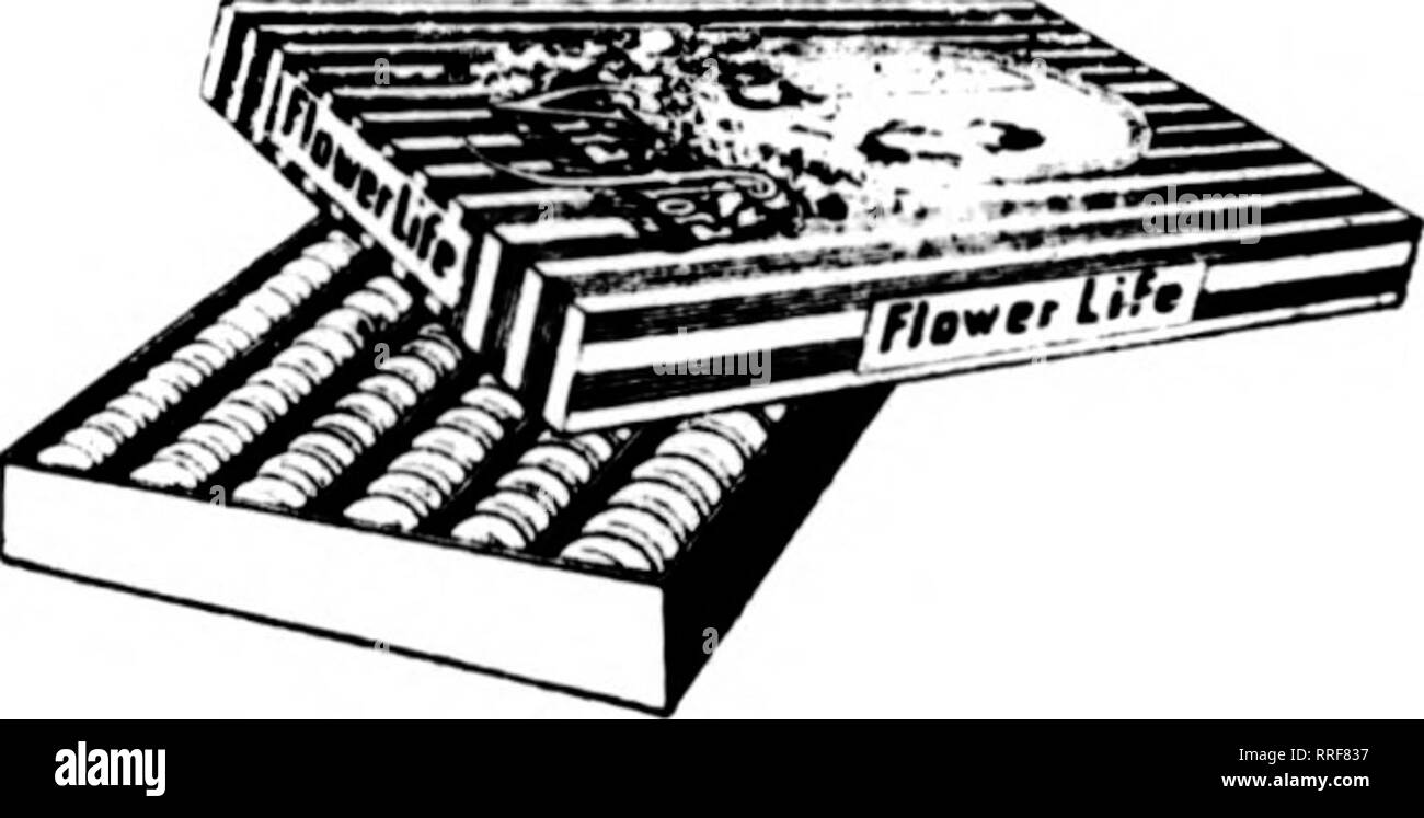 . Florists' review [microform]. Floriculture. ita-fibra r//£ L/F£ OF FLOWERS. oocL™ Which Food Shall I Sell? THIS QUESTION SHOULD ONLY BE ANSWERED ONE WAY— THE BEST THIS IN OUR ESTIMATION MEANS Vita-Flora Plant Food Tablets THE I'EKFECTLV BALANCED KOK.Vll LA . _, .. ^. ^^ . xitrojfjii r).(i-j'. Equivalent to Ammonia (5.83'. 1 hcse 1 ablcts Site Cleaii, Odorless, Ami lable F^hosphoric Acid (P-'U») 10.98'/r . .^ watei-soiui.ie Potash (K-'0)_ . 6.65'r Convcnient, Scientific, Economical K(iuivalent to Potassium i^.nl'>. ' ' and Fool-proof. One Tablet crushed and placed in a quart of water makes - Stock Image