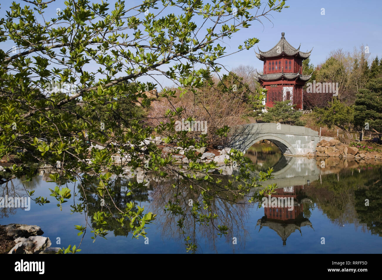 Stone footbridge and the Tower of Condensing Clouds pavilion and Dream lake in Chinese Garden in spring Montreal Botanical Garden, Quebec, Canada - Stock Image