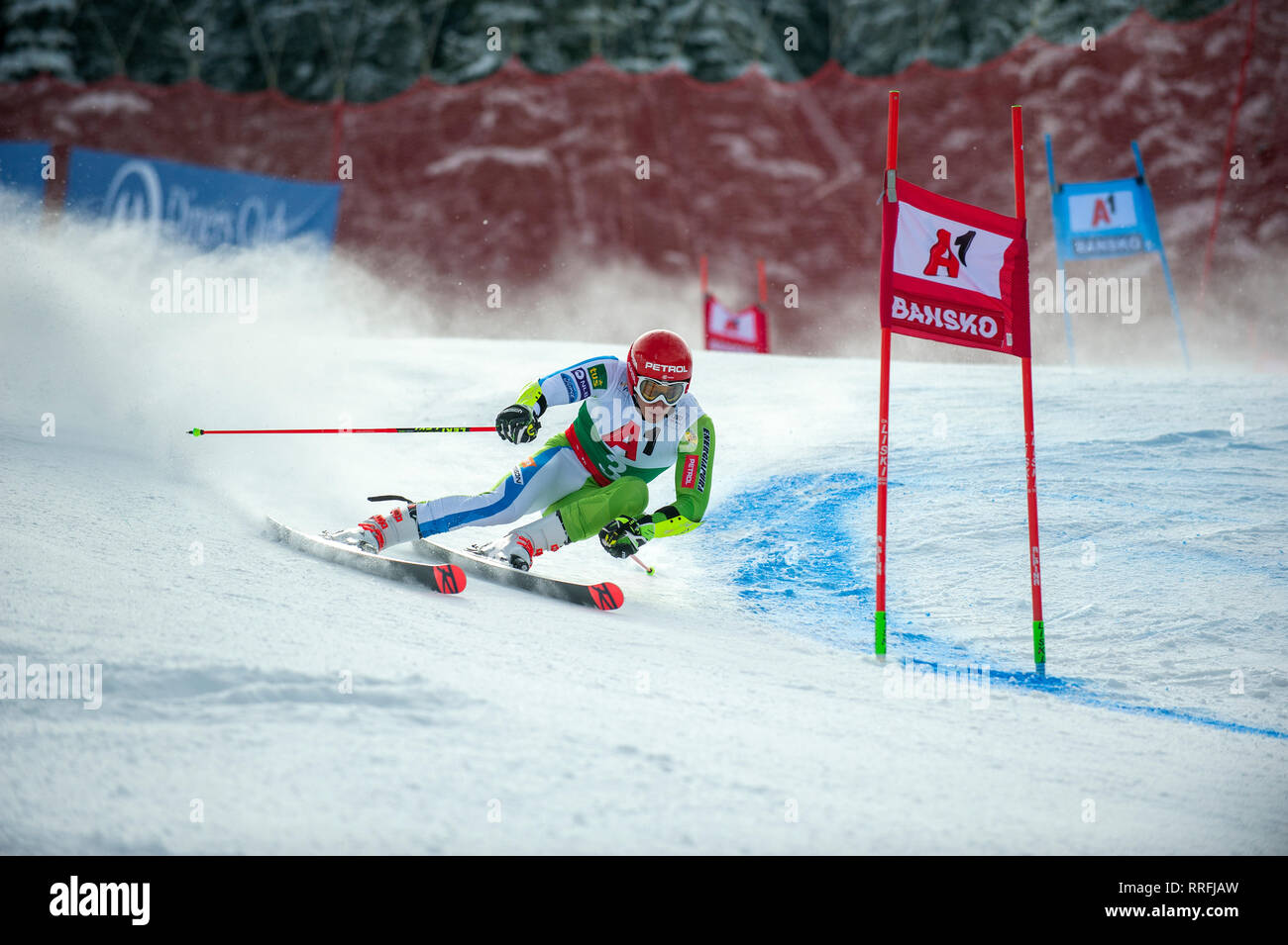 Bansko, Bulgaria. 24th Feb 2019. Zan Kranjec (SLO) competing in Audi FIS Alpine Ski World Cup Men's Giant Slalom on February 24, 2019 in Bansko, Bulgaria. Credit: Borislav Stefanov/Alamy Live News Stock Photo