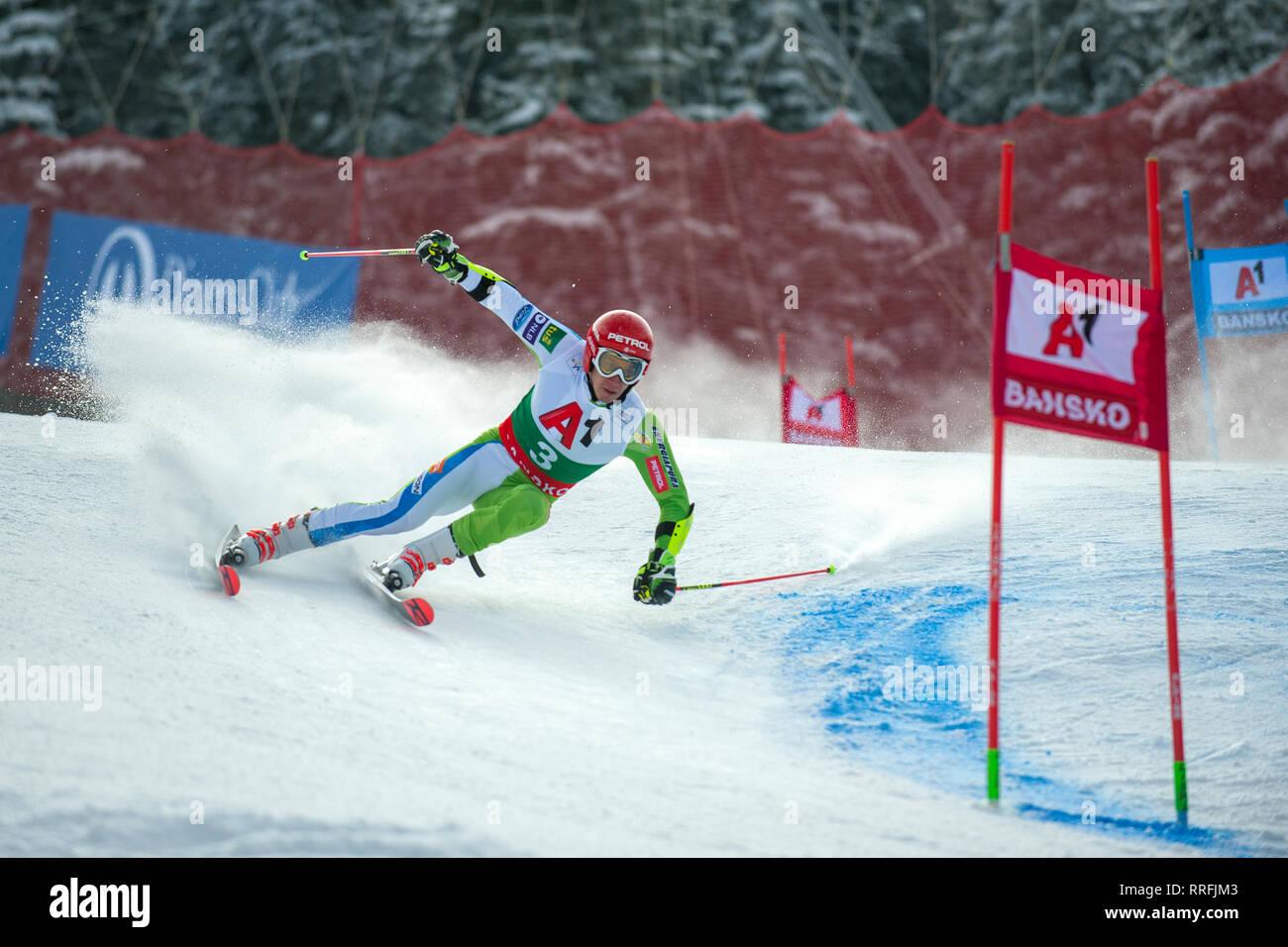 Bansko, Bulgaria. 24th Feb 2019. Zan Kranjec (SLO) competing in Audi FIS Alpine Ski World Cup Men's Giant Slalom on February 24, 2019 in Bansko, Bulgaria. Credit: Borislav Stefanov/Alamy Live News Stock Photo
