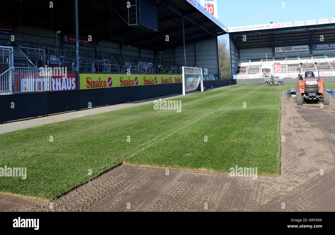 26 February 2019 Schleswig Holstein Kiel Around 8000 Square Meters Of New Grass Will Be Laid In The Holstein Stadium In Kiel The 290 Reels Cost An Almost Six Figure Sum The Last Time