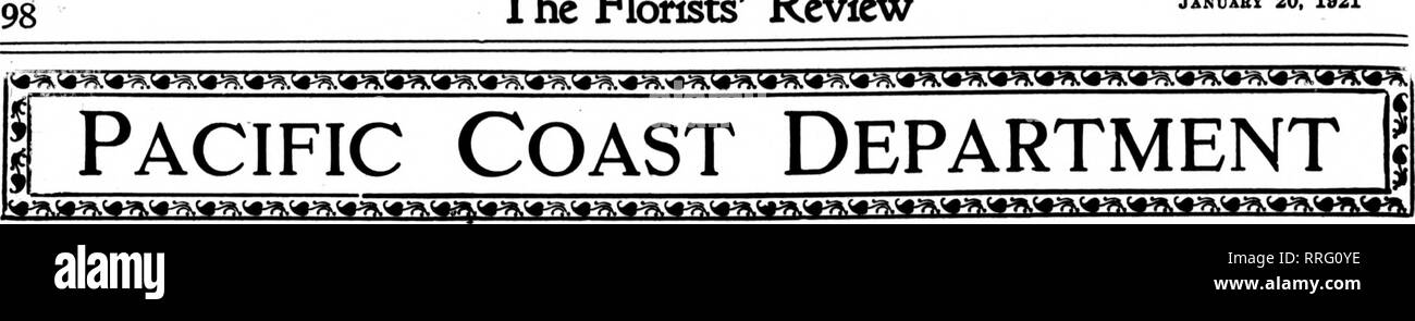 . Florists' review [microform]. Floriculture. The Rorists' Review Januabt 20, 1921. LOS ANQELES. The Market. Business generally was a little quiet last week in the retail trade, but the wholesalers have had a trade at least up to normal and in some cases better than usual. While there is an abundance of medium and poor grades of stock, first- class flowers are not plentiful. Roses have been scarce, but growers say the scarcity will only be temporary and that a good cut will soon be on. Sev- eral light frosts have occurred and these will have the effect of shortening the outside stock, especial - Stock Image