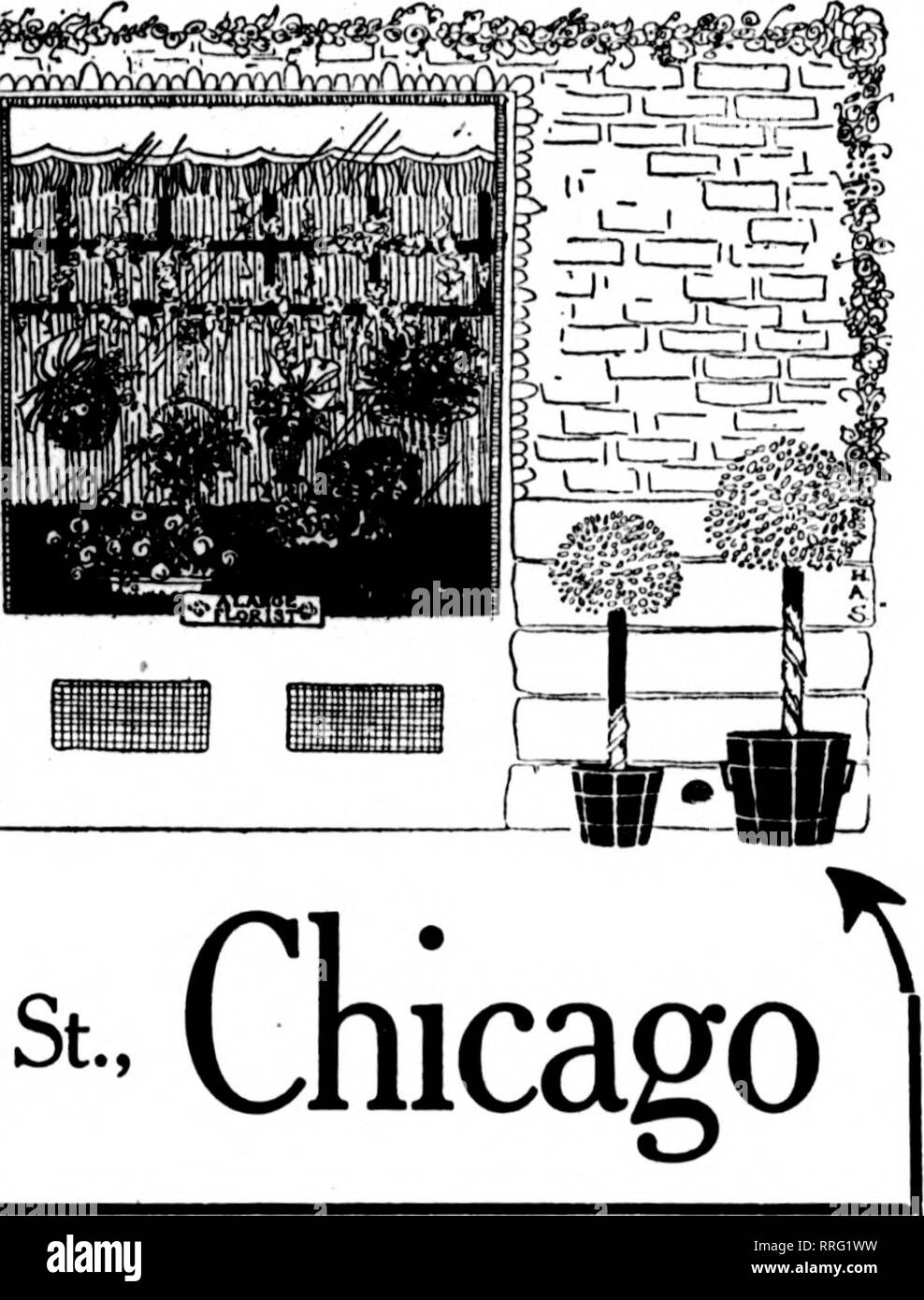 """. Florists' review [microform]. Floriculture. I A. LANGE, East""""M^fe.St' Chicago. HARTFORD, CONNECTICUT Welch's Flower Shop 197 Trumbull Street A. W. Welch Mrs. E. M. Welch HARTFORD.-CONN. Greenhouses: Benton St Stores: 741 Main St 364 Asylum St ?laf F. T. u Order* loliciltj (or all puts ot Connecticut BRIDGEPORT, CONN. James Horan & Son 943 MAIN STREET Largest Growers in this District. MnCBSBS FlObhts' Tii.soaAPH Dxuyxbt. BIDDEFORD, ME. NEAR PORTLAND Hankr F. T. D. CARNATIONS PORTLAND, ME. THE FLOWER SHOP M. E. McOunigle Ck)r. Oak and Free Sts. MANCHESTER, N. H. L D. PHONB MJl-R. H. C. STA - Stock Image"""