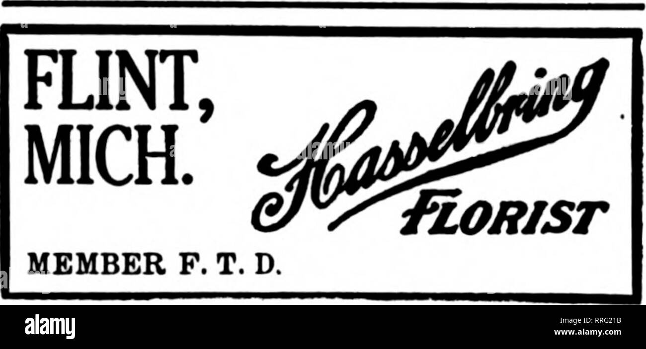 """. Florists' review [microform]. Floriculture. The L. Bemb Floral Co. Albert PocHELON, 15P> Bates Street Yours For More Co-operation ?E^ag- DETROIT, MICH. Harry E. Taylor Highland Park Florid 12135 Woodward Ave. Member F. T. D. DETROIT, MICH. Peter F. Reuss & Co., 66 BROADWAY Detroit, Mich. ?Eo^Sl CO. 6363 Grand River Avenue Member F. T. D. Kalamazoo, Michigan G. VAN BOCHOVE & BRO. F. T. D. Orders Satisfactorily Filled Muskegon, Mich. Ll^r BUTTERWORTH FLORAL CO. PORT HURON, MICH. ASMAN. LEADING FLORLST Prompt Delivery CHICAGO DETROIT Central Floral Co. """"FX0WER3 THAT LAST LONGER& - Stock Image"""