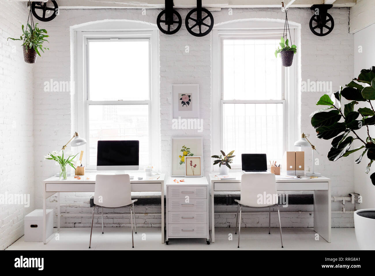 Monochromatic Modern Workplace with Floral Accents - Stock Image