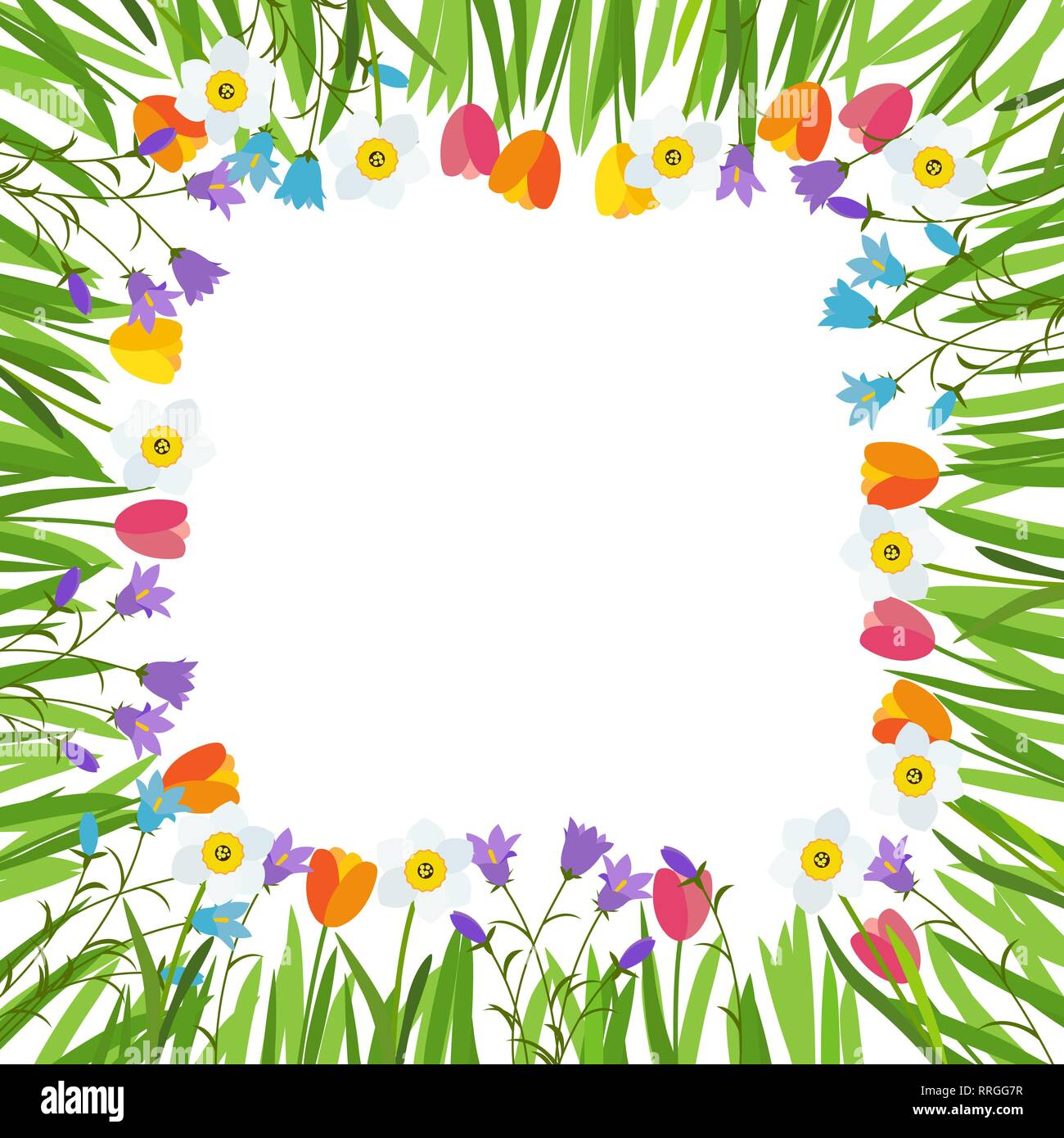 Spring Tulip Bluebell Narcissus Flowers Background Vector