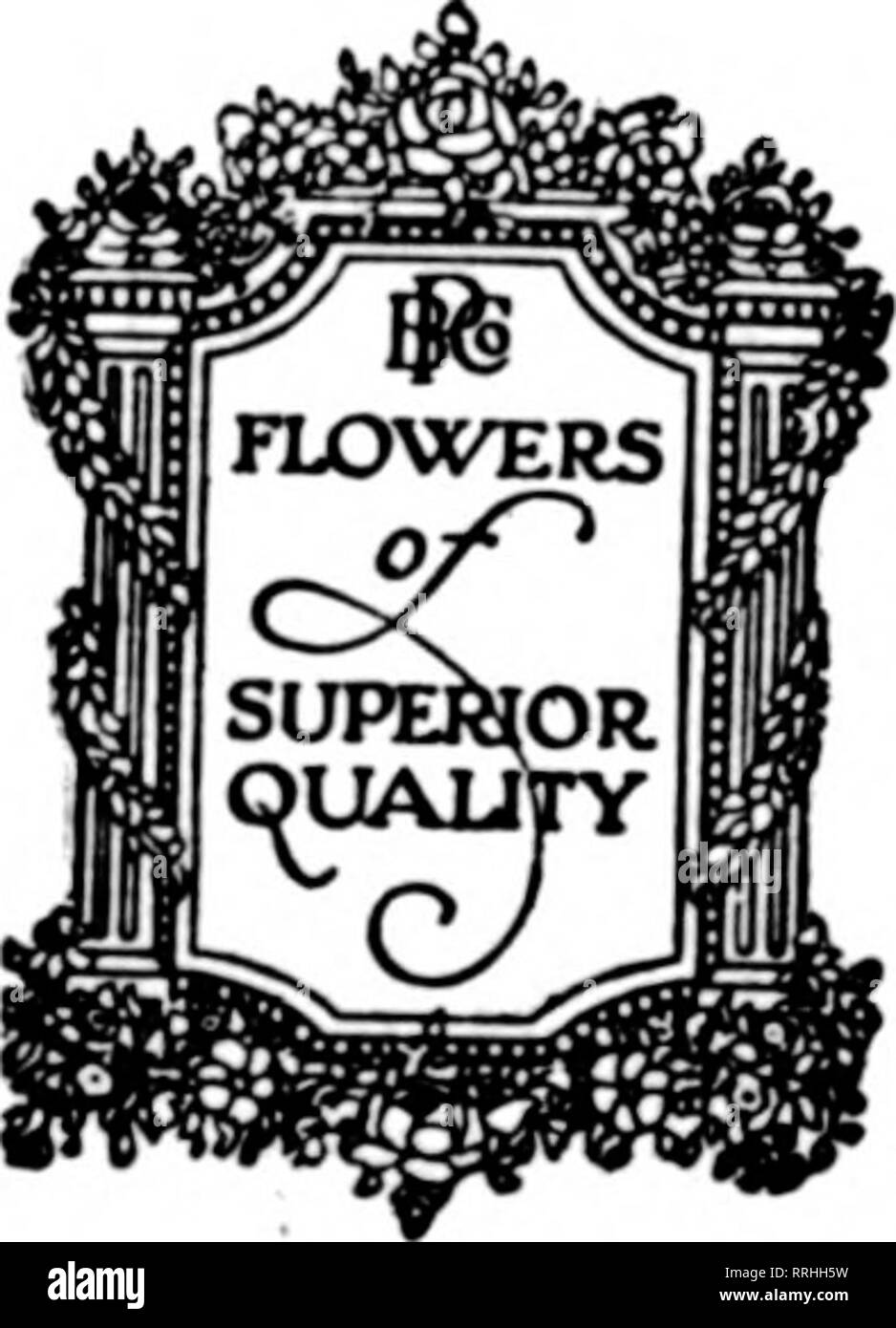 """. Florists' review [microform]. Floriculture. The Rorists^ Review Mat 20, 1920. For MEMO Poehlmann Brothers' shipping Sunday, May 30th. There will be """"Flowers of Superior Quality"""" al we will book orders for shipmen well to keep in mind tha will be observed on Monday, Ma] your late Holiday needs to u Ju^ne Wedding an( for highest quality stod. Poehlmann Br( 6 6 to 7 4 E a s Telephoi"""" CHICAGO,. Please note that these images are extracted from scanned page images that may have been digitally enhanced for readability - coloration and appearance of these illustrations may not perfect - Stock Image"""