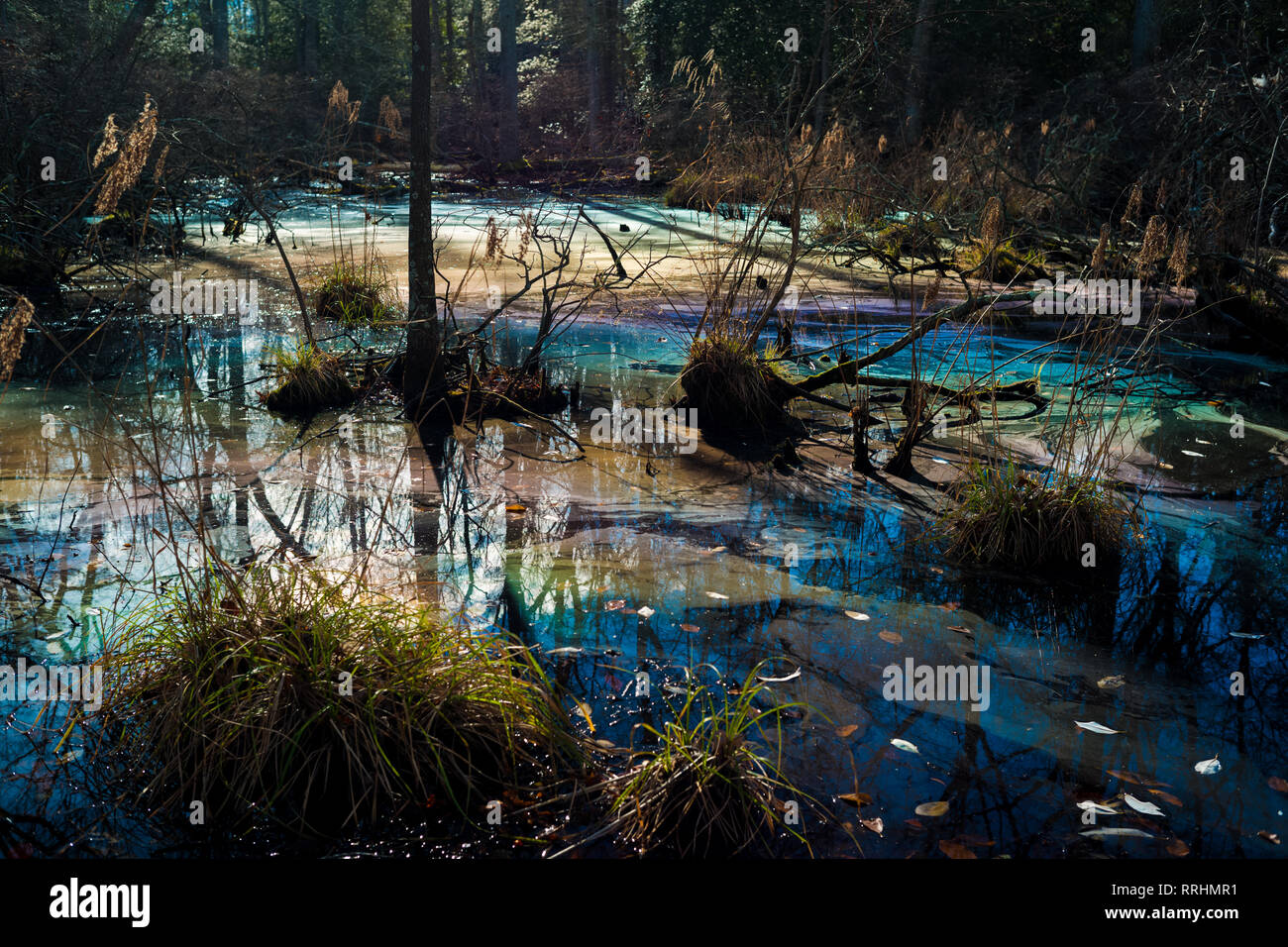 Colorful toxic water pollution in wetland environmental hazard environment. - Stock Image