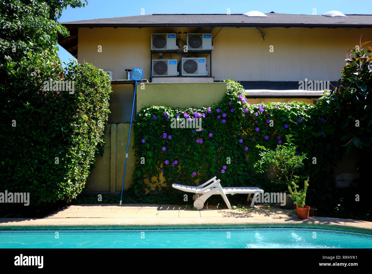 Garden with swimming pool and deck chair - Stock Image