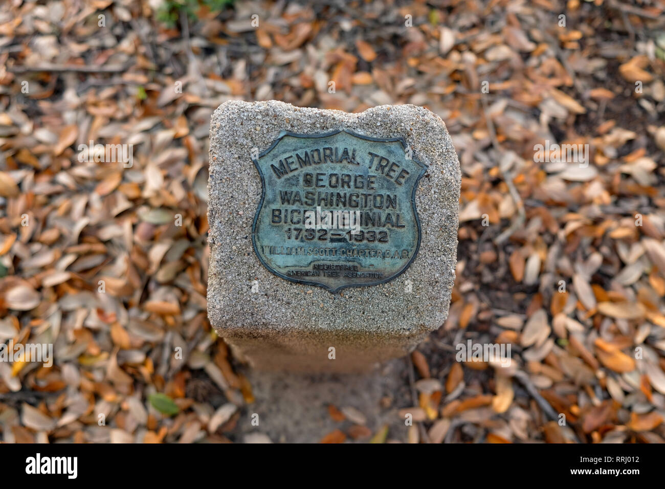 George Washington Bicentennial Tree Marker; dedicated in 1932 to commemorate the 200th anniversary of George Waghington's birth; Bryan, Texas, USA. - Stock Image