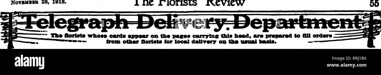 . Florists' review [microform]. Floriculture. NOTSHBBB 28, 1918. The Florists^ Review. CHICAGO Send Your Orders to.* William J. SMYTH Member Florirts* Teleflraph Delivery Association 3101 to 3109 Michigan Ave. CARBON E, 848 BOTlston St., BOSTON Meaber Florists^ Td^rapb Delivery Ass'a H. F. A. LANGE Worcester, Mass. Deliyers to All Poiats in New England 128,000 Square Feet of Glass Member Florists' Telegraph Delivery Ass'n. Worcester, Mass. Randairs Flower Shop Member Florists* Telegraph Delivery Canada's Florist 8-10 W. Adelaide St., TORONTO Member Florlsta* Teleirraph DeMvery Am'd. Largest Re - Stock Image