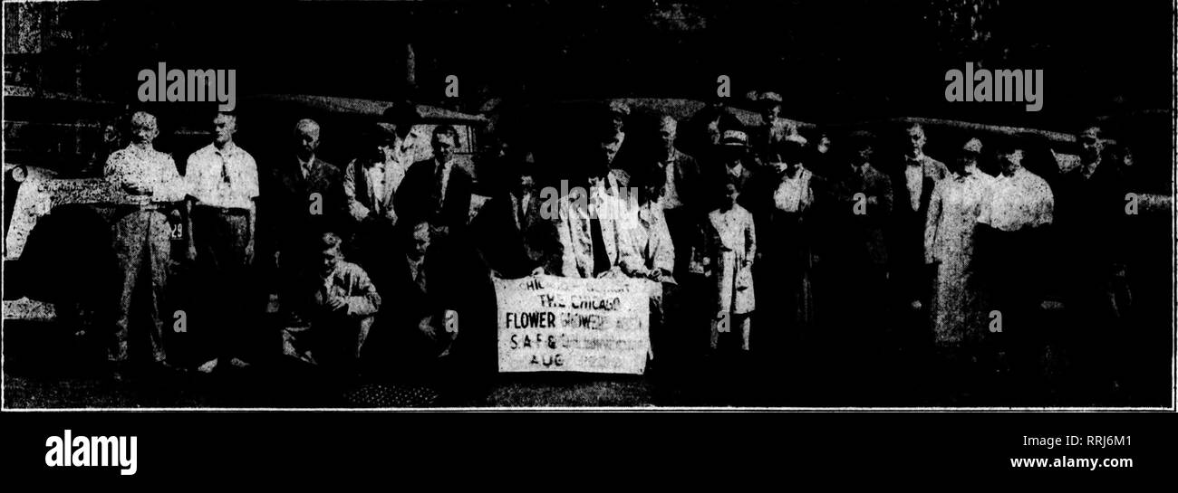 . Florists' review [microform]. Floriculture. ,^-. Ad«08T 28, 191». The Florists^ Review 2B. Officers of the Chicaffo Flower Grower*' Aasociation and Their Associates Off for Detroit. first inspections and for conference with jobbers. He is thought to have modi- fied his ideas when he saw the size of the job. The outcome-, of the Chicago confer- ence was that Ohief Glenn arranged to inspect at Chicago all bulbs destined for Illinois consignees while in the hands of the jobbers, thus obviating the neces- sity of chasing the shipments all over the state. What he will do with ship- ments direct f Stock Photo